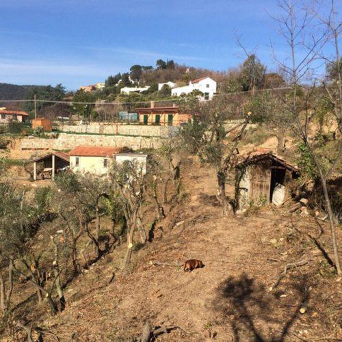 Studio Annamaria Cane | Villa Semi Ipogea in Noli | Nuove Costruzioni - 3