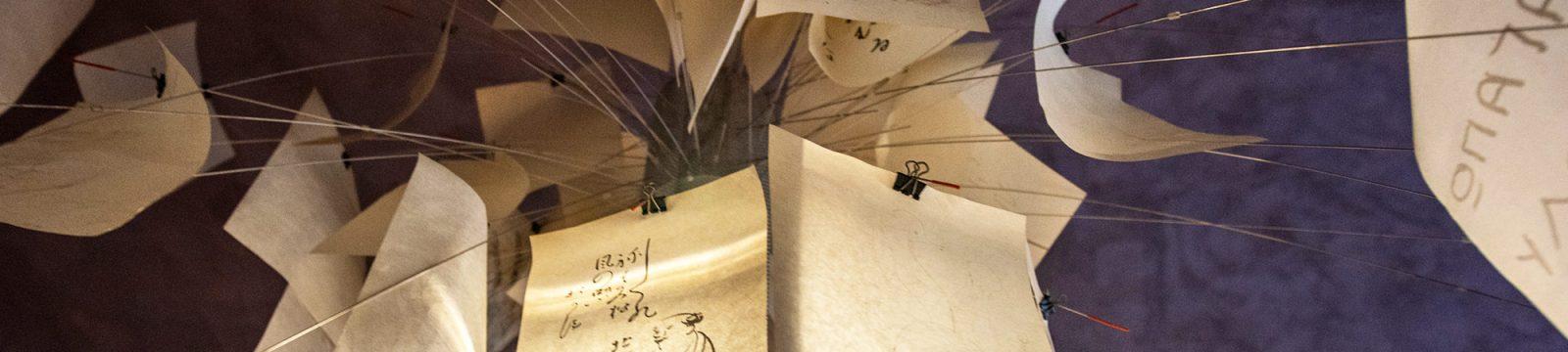 Studio Anna Cane | Architettura e Interior Design | Alba | Competenze
